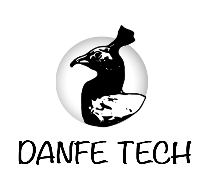 Danfe Tech -Agile solutions tailored to your business needs